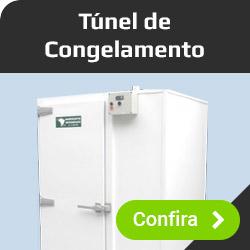 Túnel de Congalamento